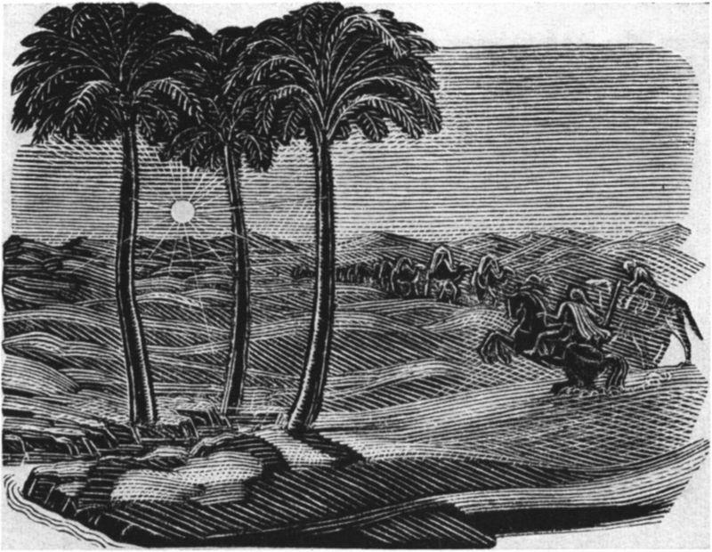 М пикова три пальмы