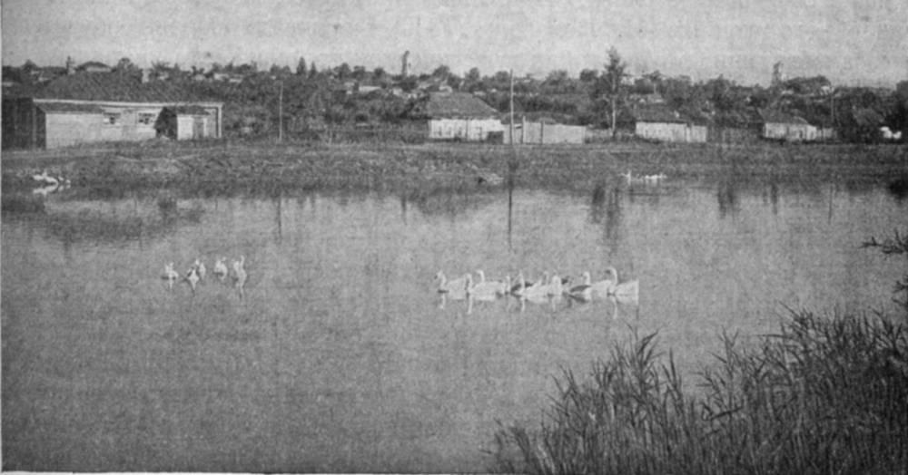ЧЕМБАР. ОБЩИЙ ВИД ГОРОДА. Фотография В.Чудинова, 1937г.
